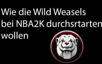 Wie die Wild Weasels bei NBA2K 20 angreifen wollen #118